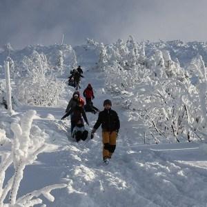 zimowy spacer w zawoi